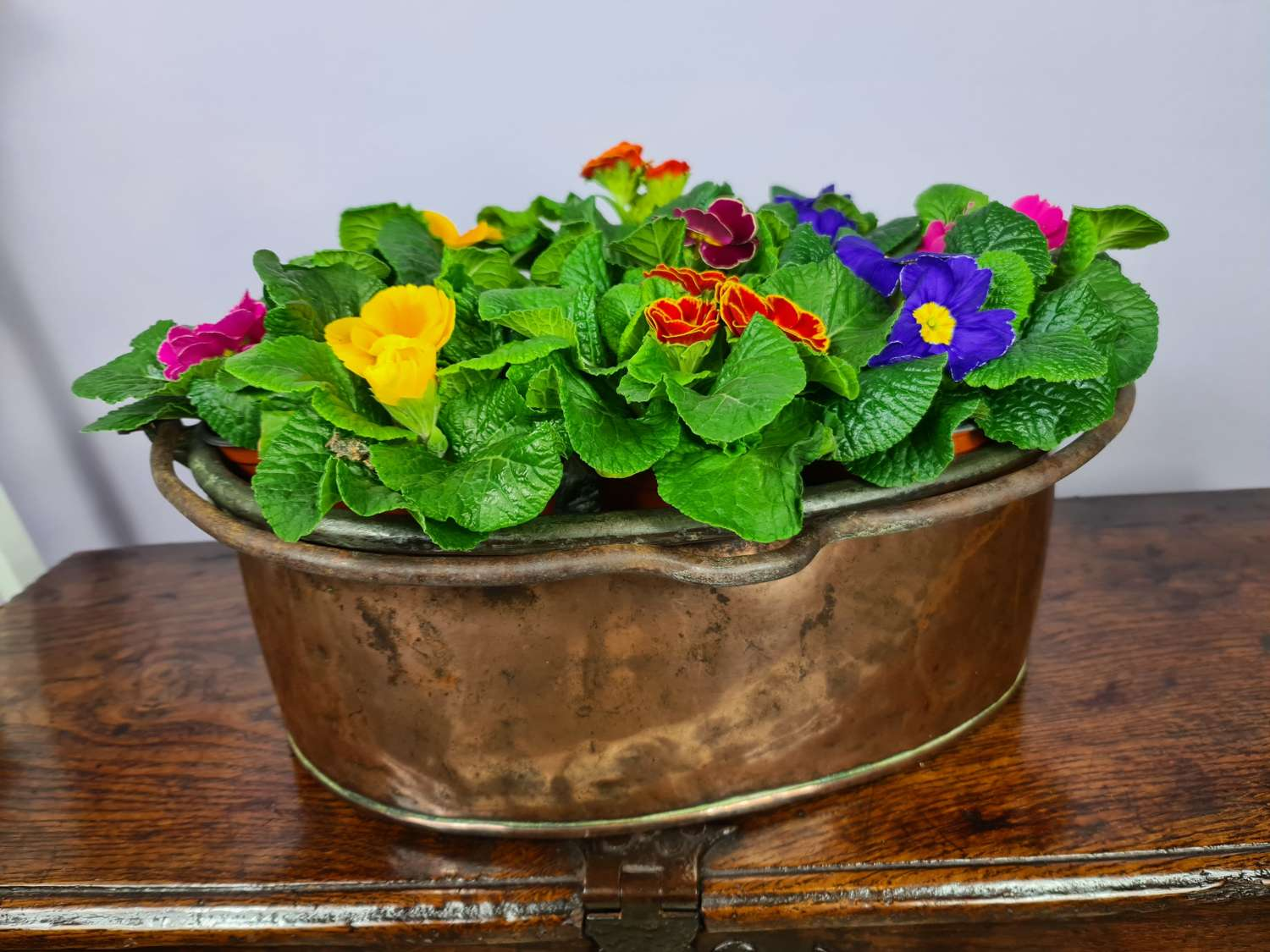 19th century Oval Copper Planter.
