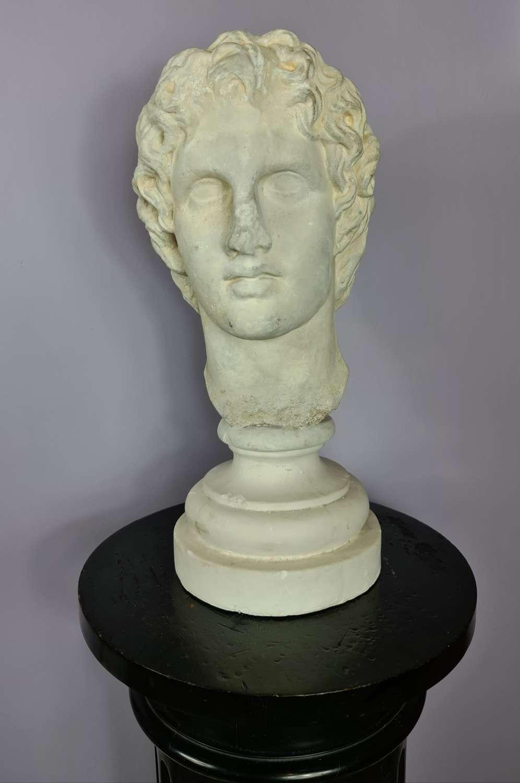 Life size plaster Bust of Alexander
