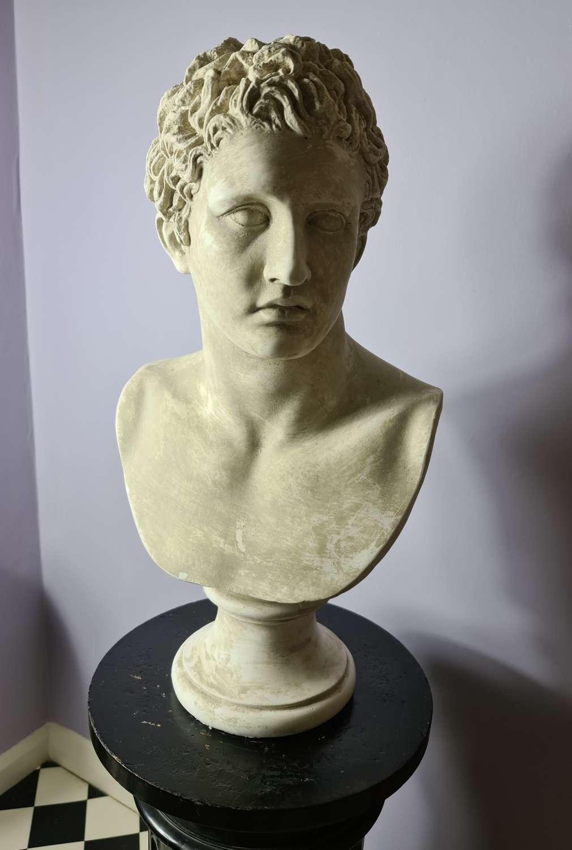 Life Size Plaster Bust of Mark Antony