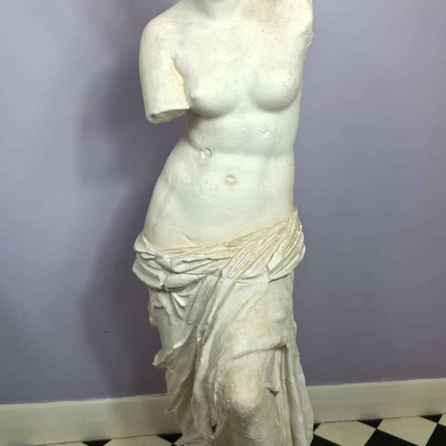 Wonderful Reduced Model of Venus de Milo