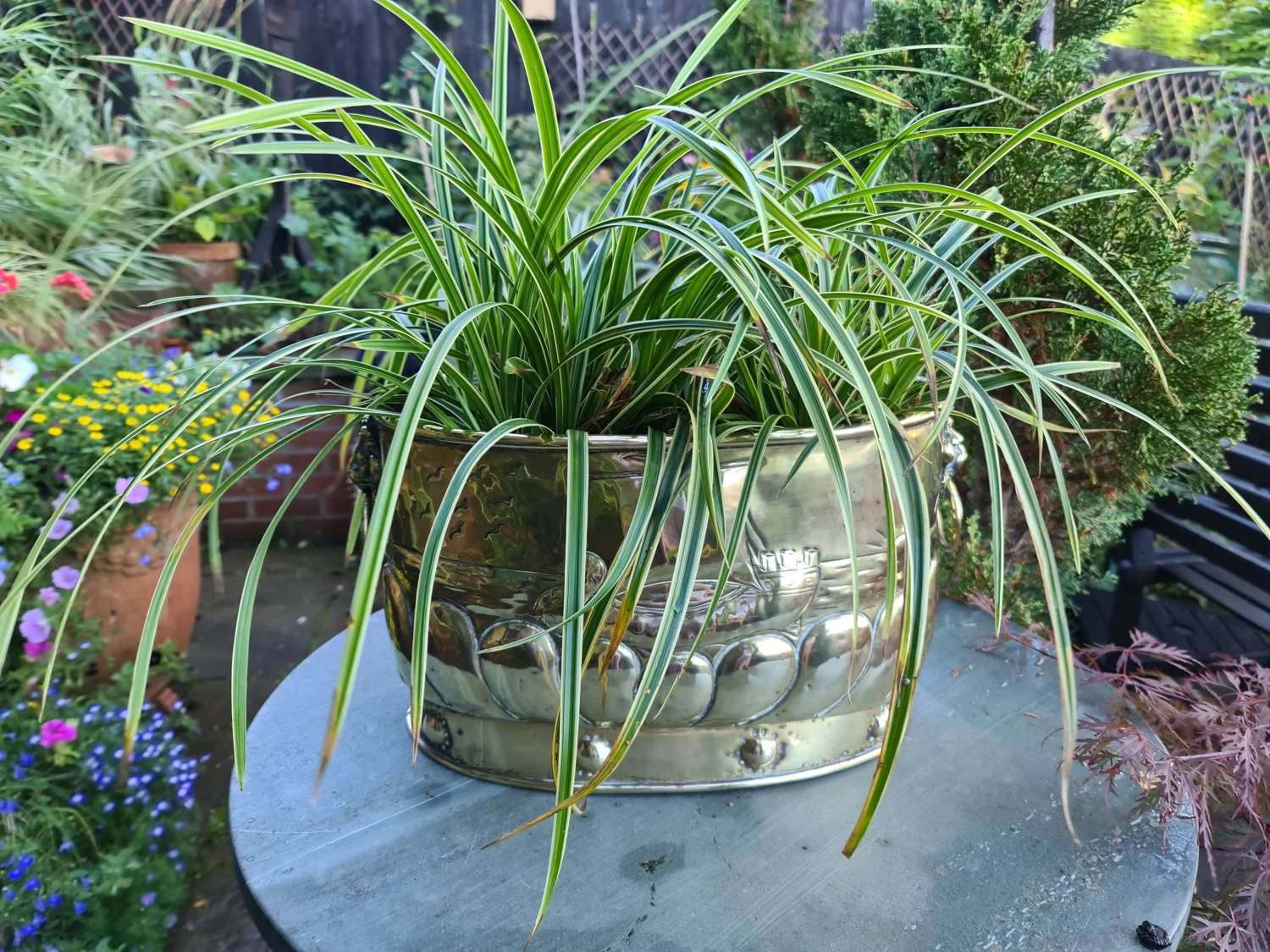 Nicely Patinated Dutch Brass Planter